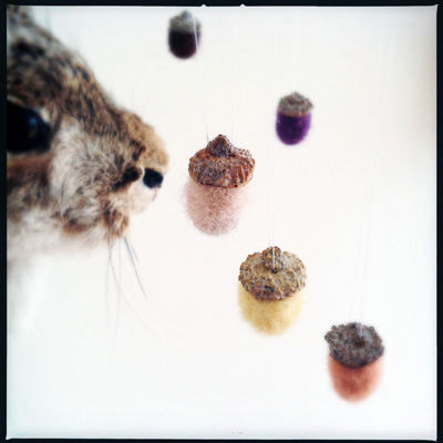 YC felted acorns2